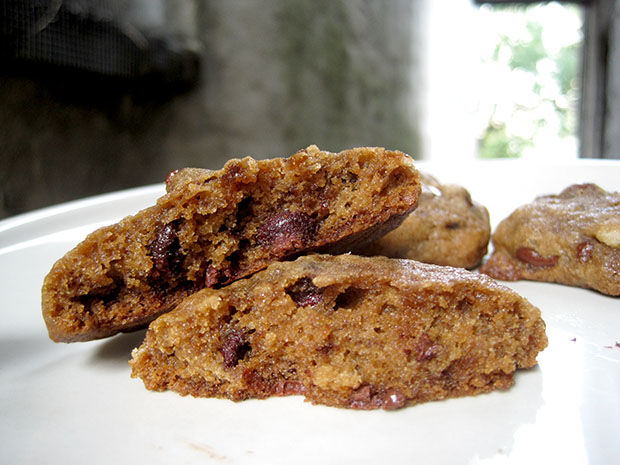 Alton brown s chewy chocolate chip cookie want dessert for Alton brown oat cuisine